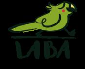 LABA Kreatywne Wyjazdy Językowe dla dzieci i młodzieży. Reggio inspired